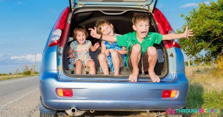 5 Road Trip Essentials You Need when Traveling with Kids
